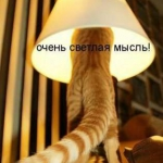 tn_кот торшер