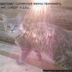 tn_091c8501d4b123622fa1a045d76a9f41