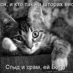 tn_0_7227d_2f377ab6_XL