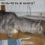 tn_1378980063_028