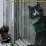 tn_86939-osho-kak-brosit-pit-alkogol-2014