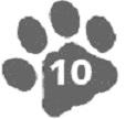 кошачья лапа 10