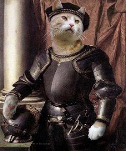 кот - рыцарь