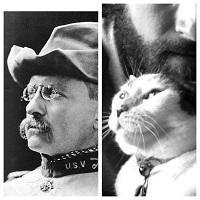кот Рузвельта