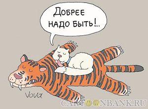 кот на тигре