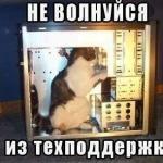 tn_кот и процессор
