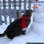 tn_кот и снеговик
