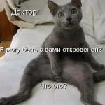 tn_кот удивлён