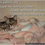 tn_0_dc786_ed4697fe_orig