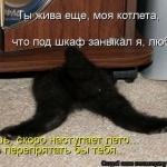 tn_1371766441_kotomatrix_04