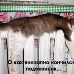 tn_29a24_325e