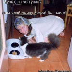 tn_3843c56a59