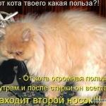 tn_385340