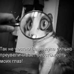 tn_9e051691228ec92589d3c9a79b861164