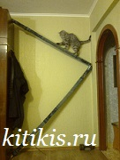 кот спорцмен