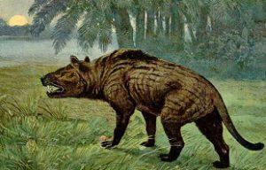 предок кошки креадонт