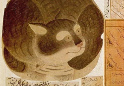 Кот Патрипатан.