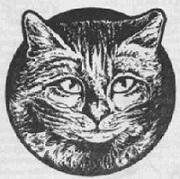 морда кошачья