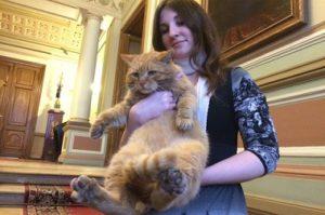 кот из серпуховского музея