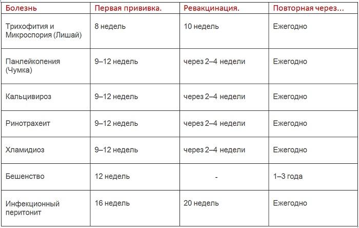 сроки прививок