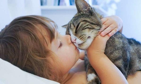 кошка с ребёнком