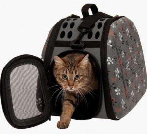 кошка в мягкой переноске